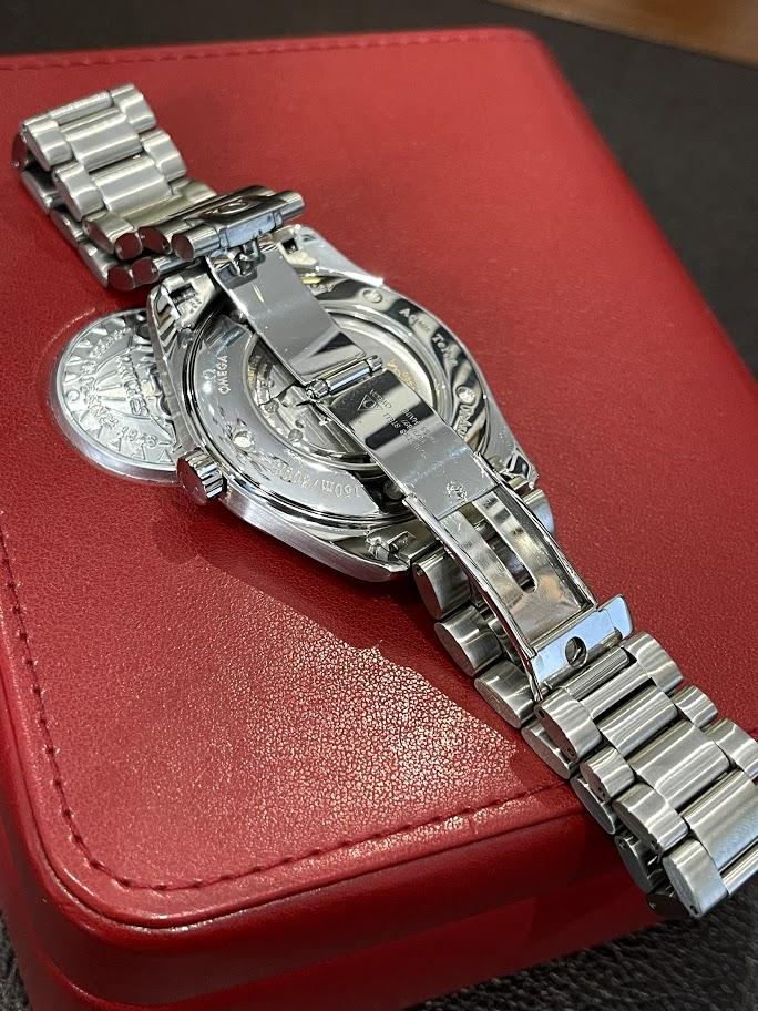 Seamaster Aqua Terra Big‑size Chronometer 2502.50.00 #2