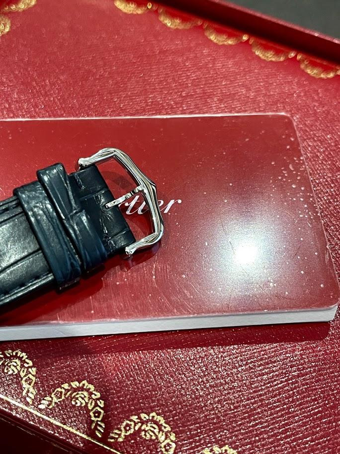 Santos de Cartier SANTOS-DUMONT XL WSSA0032 #5